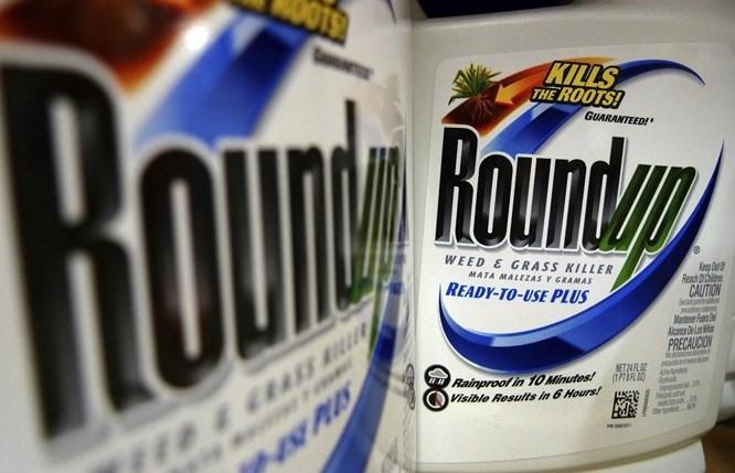 Major Verdict in Favor of Citizen Plaintiff  against Monsanto