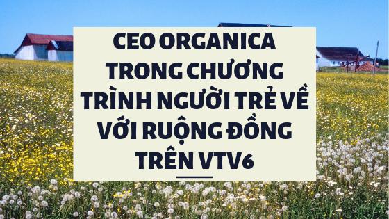 Organica CEO on VTV6