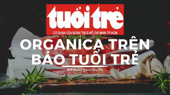 Organica on Tuoi Tre Newspaper