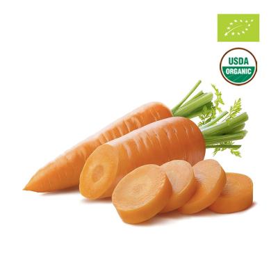 Cà rốt hữu cơ