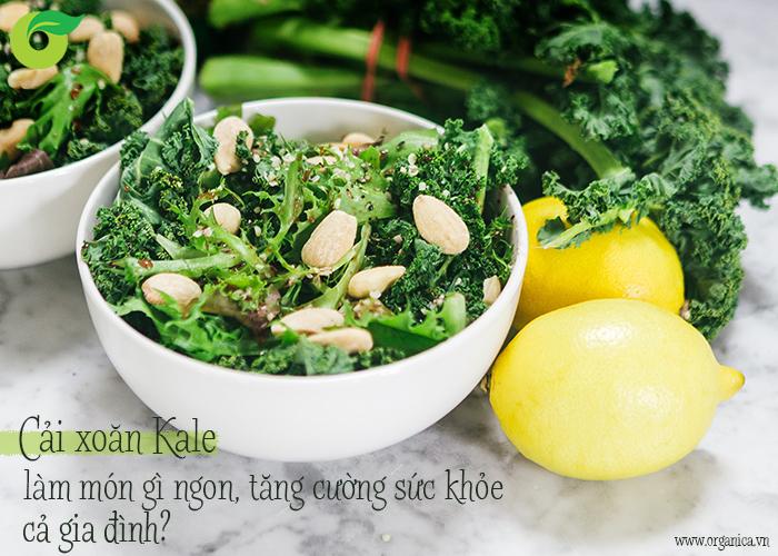 Cải xoăn Kale làm món gì ngon, tăng cường sức khỏe cả gia đình?