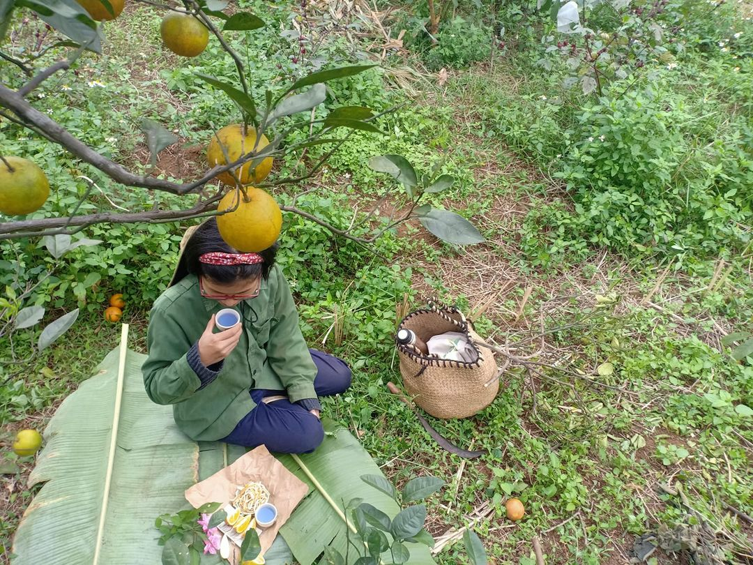 Hãy yêu những trái cam rám nắng và nhiều hạt