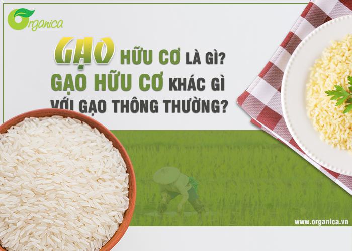 Gạo hữu cơ là gì? Gạo hữu cơ khác gì với gạo thông thường?