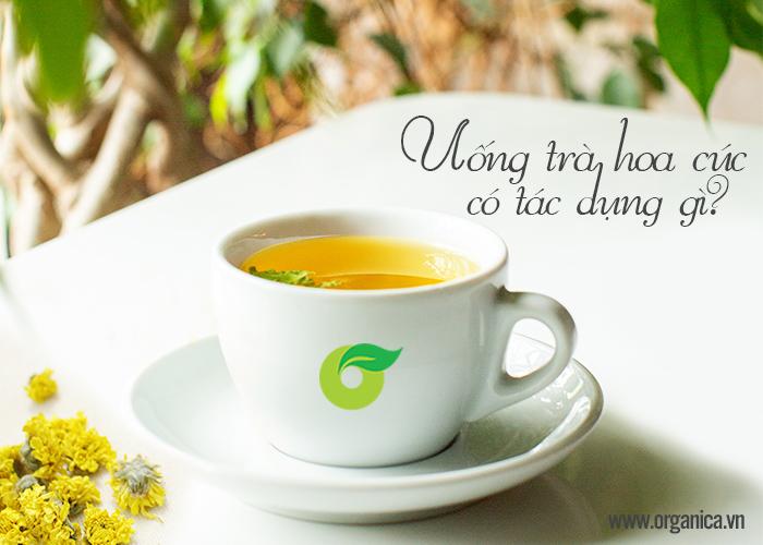 Uống trà hoa cúc có tác dụng gì?