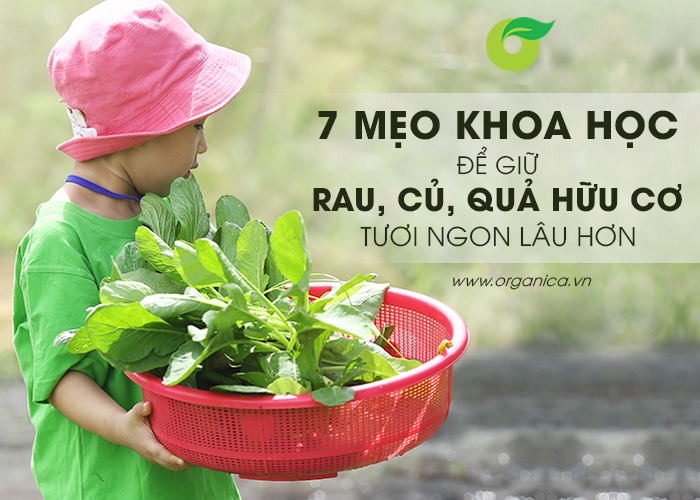 7 cách để giữ rau, củ, quả hữu cơ tươi ngon lâu hơn