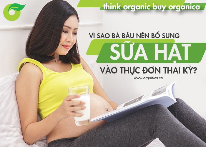 Vì sao bà bầu nên bổ sung sữa hạt vào thực đơn thai kỳ?