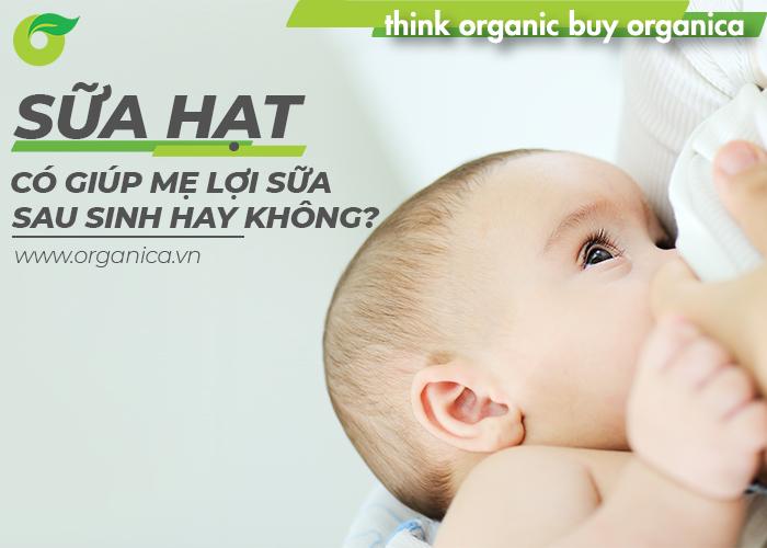 Sữa hạt có giúp mẹ lợi sữa sau sinh hay không?