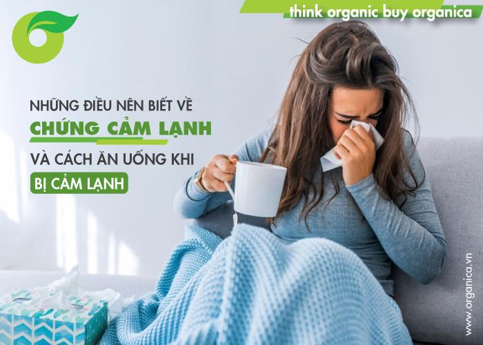 Những điều nên biết về chứng cảm lạnh và cách ăn uống khi bị cảm lạnh
