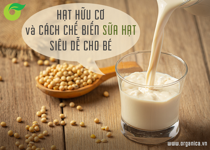 Hạt hữu cơ và cách làm sữa hạt siêu dễ cho bé