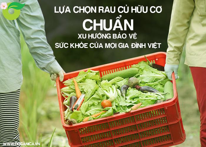 Lựa chọn rau củ hữu cơ chuẩn, xu hướng bảo vệ sức khỏe của mọi gia đình Việt