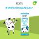 Sữa bò hữu cơ nguyên kem Koita 200ml