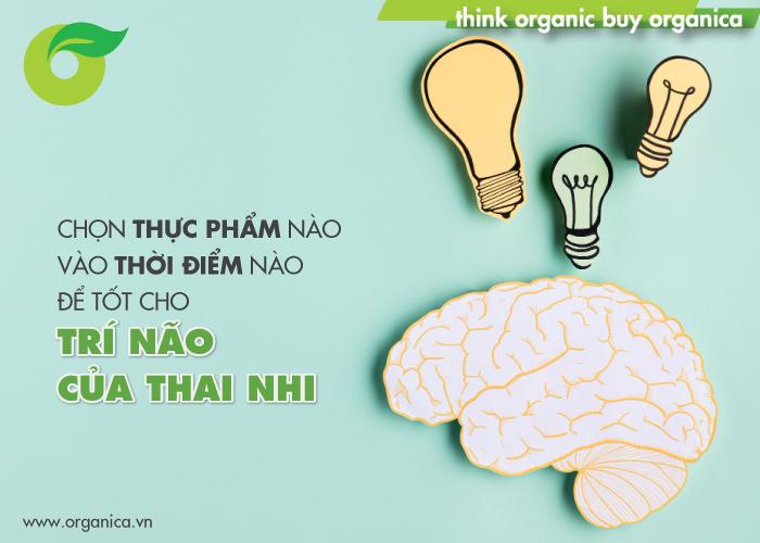 Chọn thực phẩm nào vào thời điểm nào để tốt cho trí não của thai nhi
