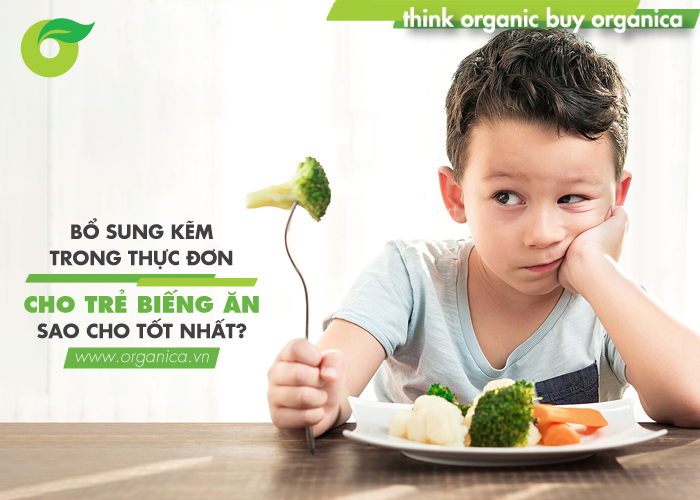 Bổ sung kẽm trong thực đơn cho trẻ biếng ăn sao cho tốt nhất?