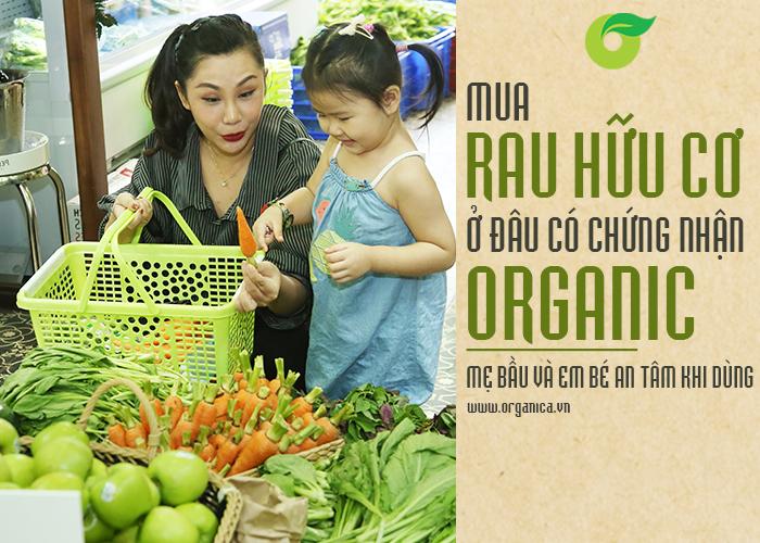 Mua rau hữu cơ ở đâu có chứng nhận organic, mẹ bầu và em bé an tâm khi dùng