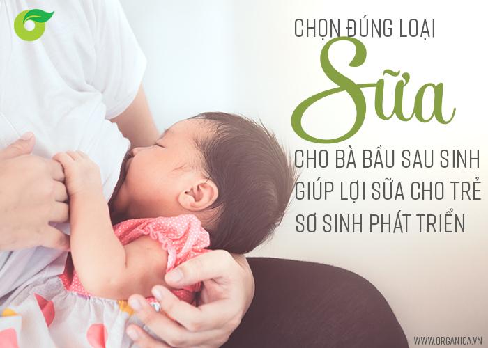 Chọn đúng loại sữa cho bà bầu sau sinh giúp lợi sữa cho trẻ sơ sinh phát triển