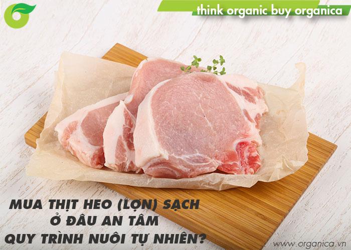 Mua thịt heo (lợn) sạch ở đâu an tâm, quy trình nuôi tự nhiên?