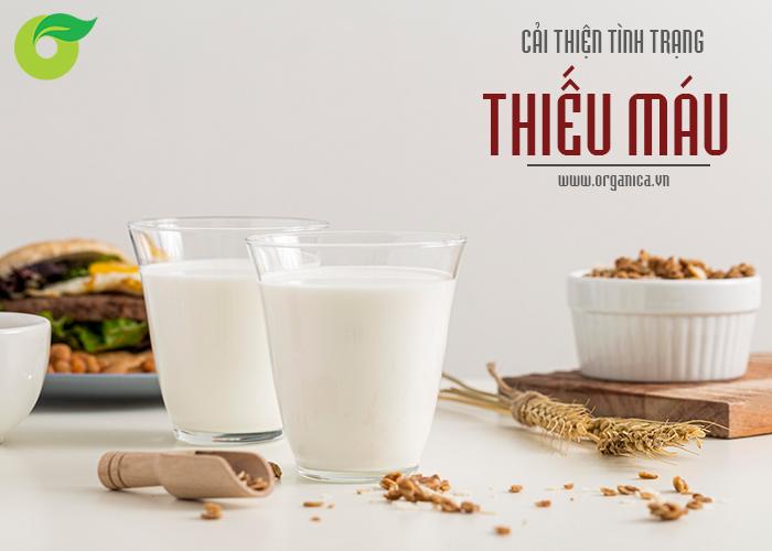 Sữa hạt chứa nhiều chất sắt giúp bạn duy trì mức độ sắt lành mạnh cho cơ thể