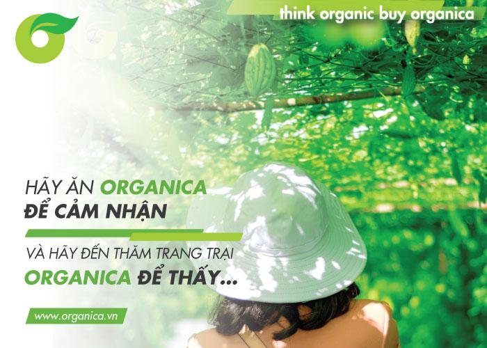 Hãy ăn Organica để cảm nhận và hãy đến thăm trang trại Organica để thấy…